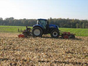 Maisstoppeln mulchen